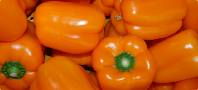 Orange capsicums