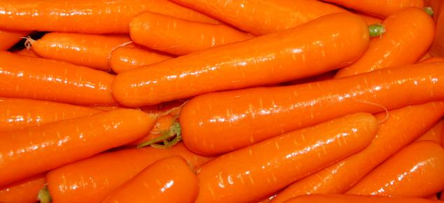 Western Australian carrots
