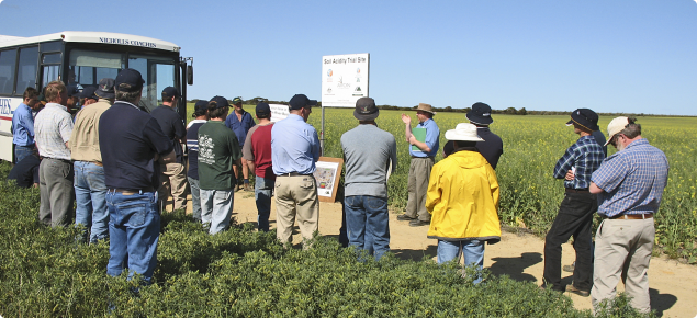 Interested farmers at Holt Rock field day learning about results from long-term lime trial