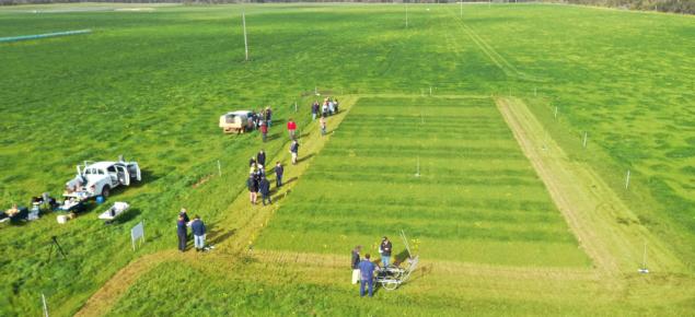 Pasture trial aerial image