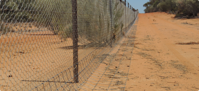 State Barrier Fence Effectiveness Surveys Agriculture