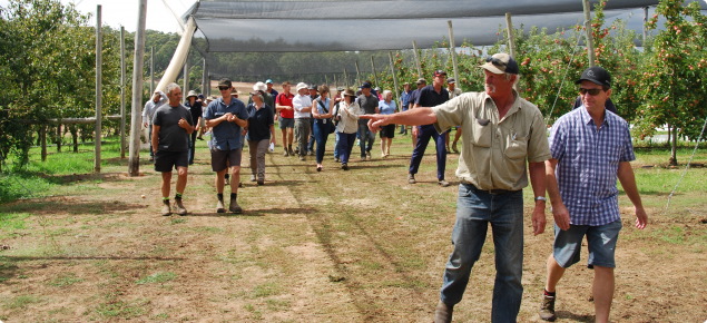 Apple Grower Mauri Lyster leading the group at a field day held at the Netted apple demonstration site in March 2015