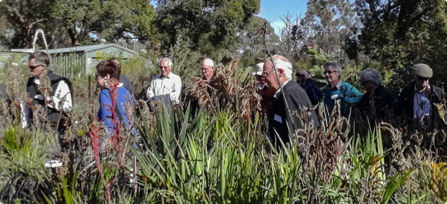Former DAFWA staff members visit Kings Park