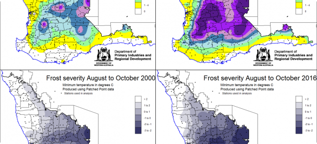 Frost occurrence and severity maps for August-October for the year 2000 and 2016. These maps show how diverse frost events can be.