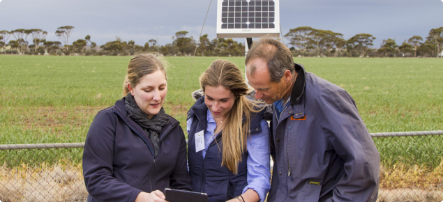 Development officer showing two growers a decision support tool on a tablet in front of the Merredin weather station