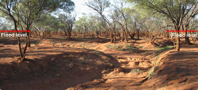 Dried river channel with mud stained trees to about one and a half meters