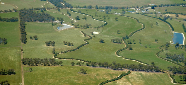 Aerial photo of grade banks for water conservation with trees planted on downslope