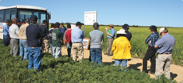 Field day with growers discussing benefits of managing soil acidity at Holt Rock
