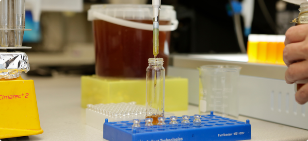 Testing honey in a laboratory