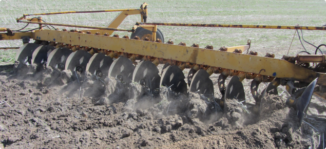 Image shows a modified one way plough with large discs that are inverting a repellent sandy gravel soil near Badgingarra