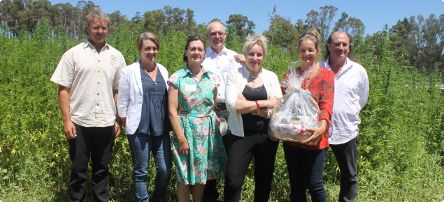HempGro achieves WA Government grant for seed trials