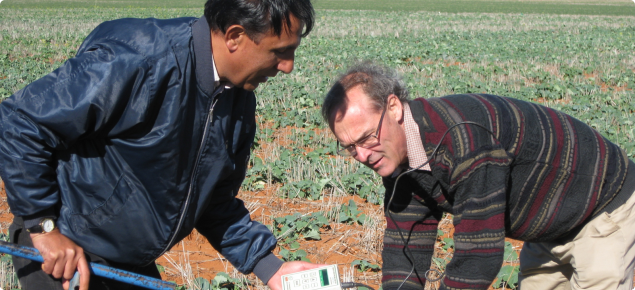 Photo of Dr Raj Malik and Dr Bob French (DAFWA) using a capacitance probe to assess the moisture at Mullewa in early July 2013.  In the background are plots in the canola density trial.