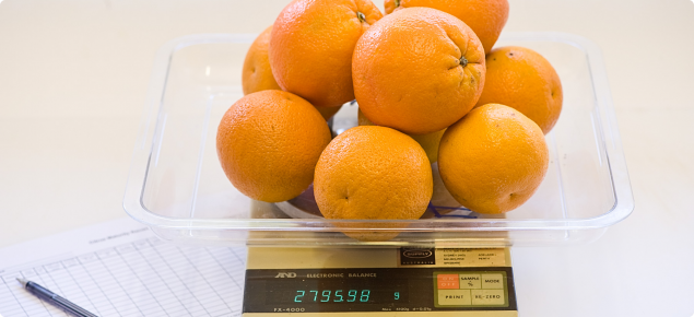 Weighing citrus fruit to determine percentage juice
