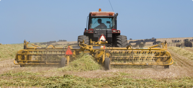 Hay being raked into windrows in a paddock using tractor towed raking equipment