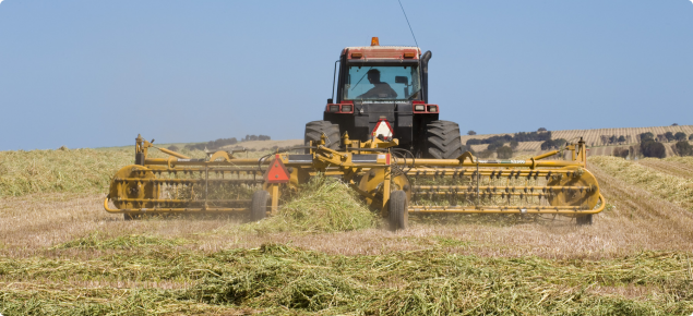 Image of cereal hay being raked