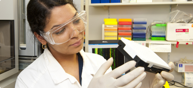 Female Grains Research officer wearing lab coat and protective eye wear looking for genetic markers (DNA) in a laboratory at Murdoch University.