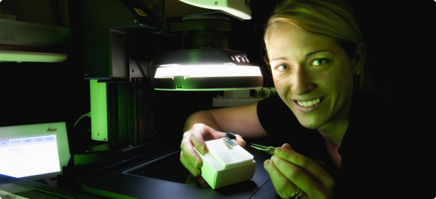 Pia Scanlan shows a mounted insect under the digital imaging microcsope