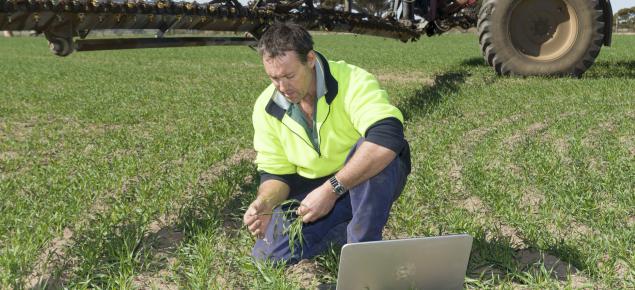 The Digital Farm program will provide regional farming businesses with digital broadband.