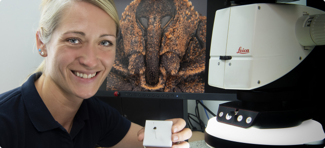 DPIRD imaging officer with weevil specimen and image
