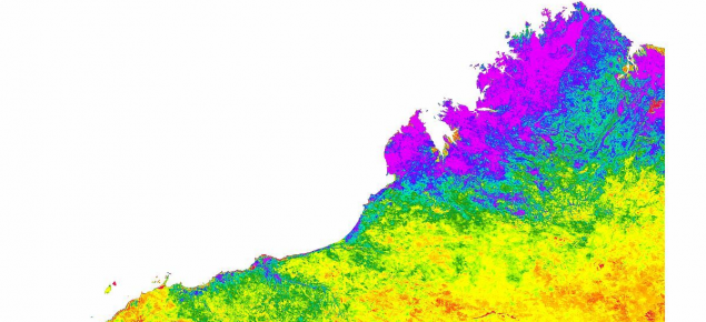 Map of Western Australia showing the NDVI colour gradings to indicate amount of green material