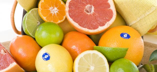 Healthy citrus fruit including oranges, limes, lemons and grapefruit