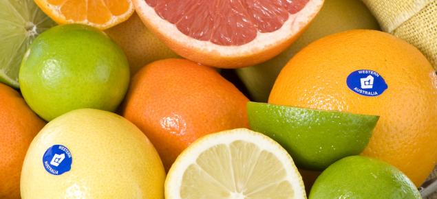 Different types of Citrus fruit with the WA citrus WA birthmark sticker