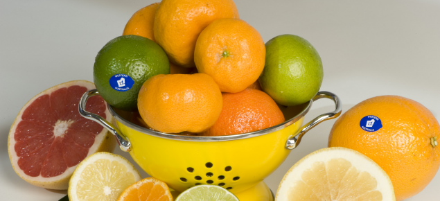 Healthy Western Australian citrus fruits