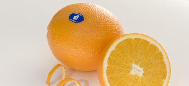 Navel orange promotional image