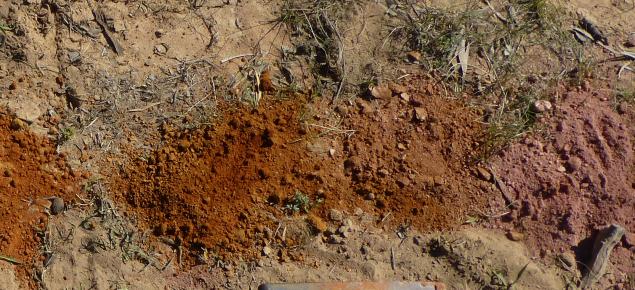Soil assessment of types