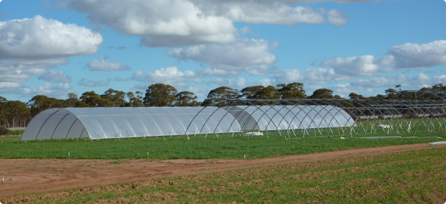 rainout shelters in managed environment facility