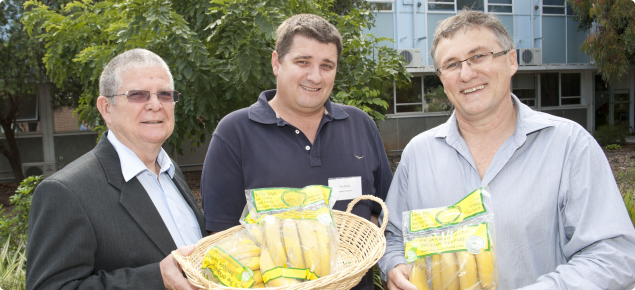 Sweeter Banana is an example of a successful co-operative