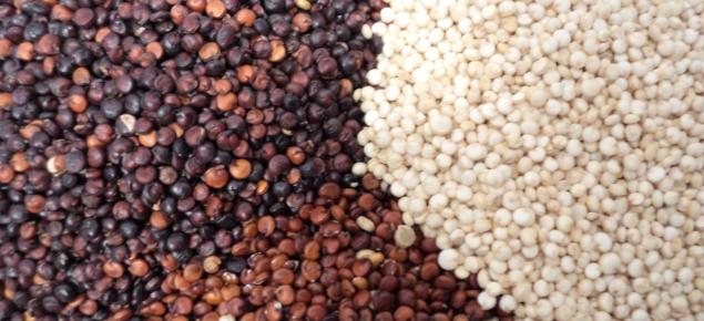 Black, White and Red Quinoa