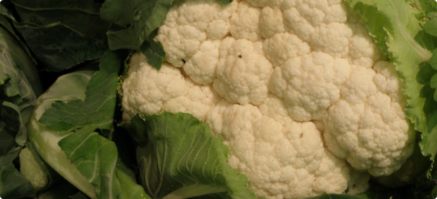 White cauliflower with trimmed green leaves ready for sale.