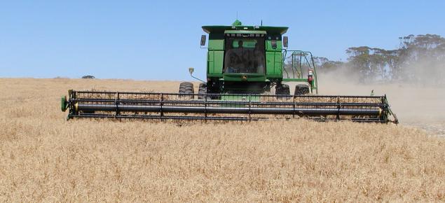 Kaspa Field Pea Harvesting with a John Deere harvester.