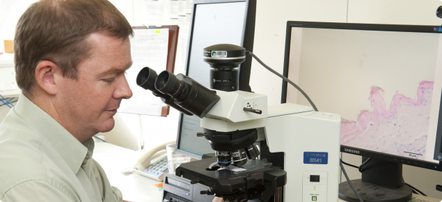 Pathologist looking at microscope and slide