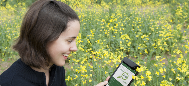 You can use the MyPestGuide app to identify and report insect pests to the department.