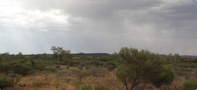 Photograph of rain falling on pastoral country in the Pilbara