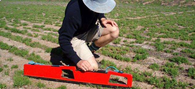 Photograph of a person using an EM38 for estimating soil salinity level