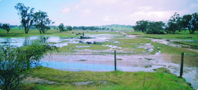 Paddock with excess water, covered by eroded soil