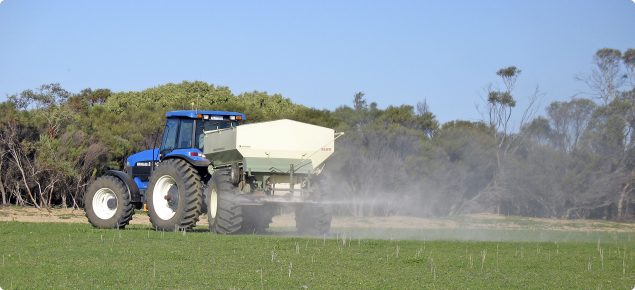 Photograph of spreading lime on pasture