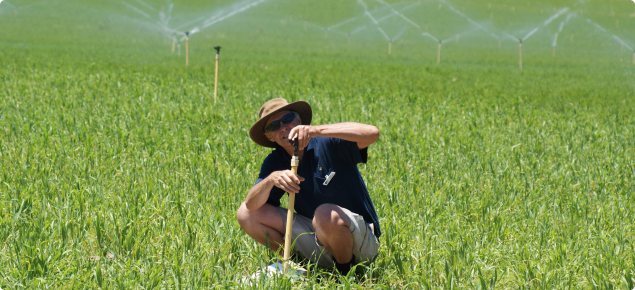 Technical Officer Mark Stanaway checks a sprinkler during an irrigation assessment