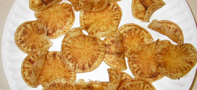 Zebra chip affected fried potato chips