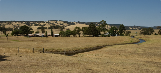 Dry farm with irrigated Collie River canal