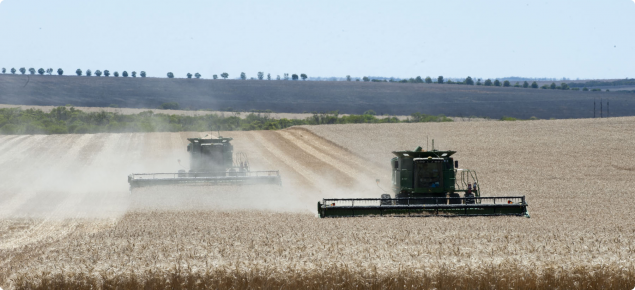 Harvesting wheat crop in Mingenew