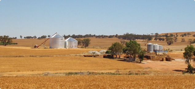 Farm silos at Goomalling
