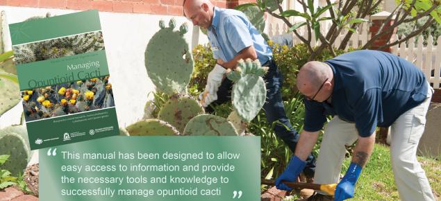 Opuntiod cactus best practice manual