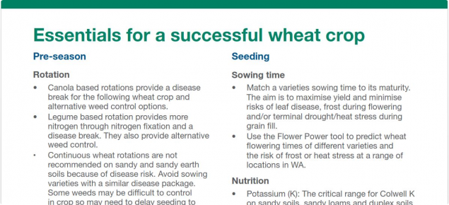 A picture of the Essentials for a successful wheat crop photo