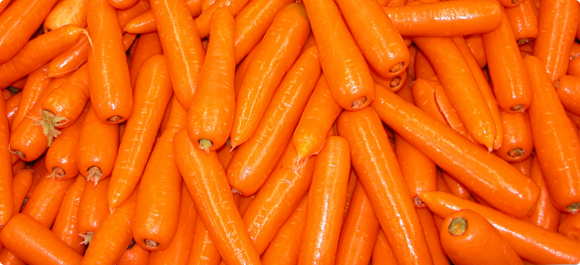Carrot exports from Western Australia | Agriculture and Food