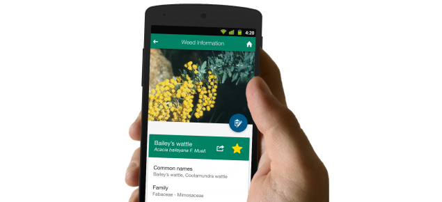 MyWeedWatcher application on a smartphone with a hand holding smartphone