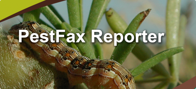 PestFax Reporter splash screen